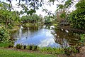 Pond - Mounts Botanical Garden - Palm Beach County, Florida - DSC03745.jpg