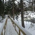 Pont en bois - Sentier de la Riviere Noire Nord-Ouest - Parc Regional des Appalaches.jpg