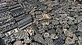 Poo030-Kathmandu-Durbar Square.jpg