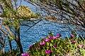 Punta Falcone 005.jpg