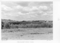 Queensland State Archives 4903 Housing Commission Estate Inala September 1953.png