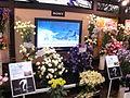 RFE06 Sony TV JP.jpg