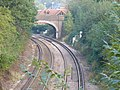 Railway Line West of Bookham - geograph.org.uk - 584187.jpg