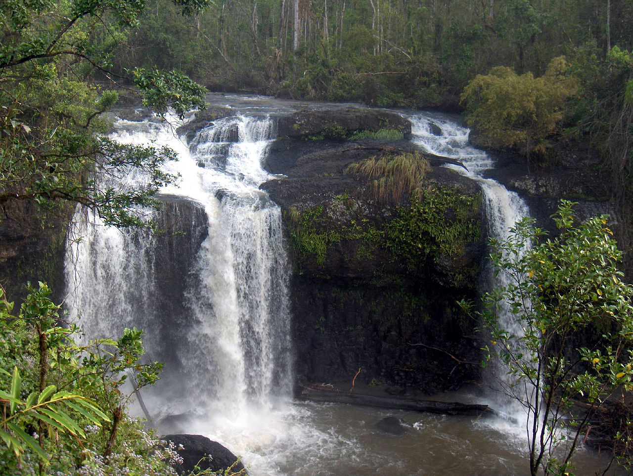 Atherton Tablelands Australia  city photos gallery : Original file ‎ 1,600 × 1,204 pixels, file size: 539 KB, MIME type ...