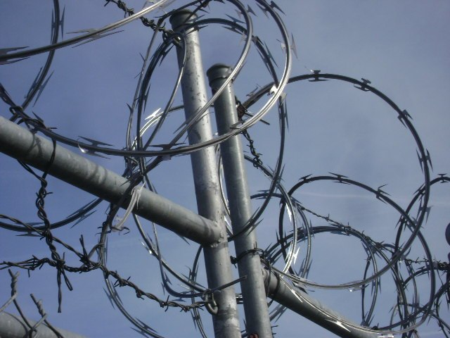 Razor Wire Bunch