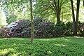Rhododendronpark Bremen 20090513 235.JPG