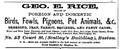 Rice BostonDirectory 1868.png