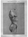 Richer - Anatomie artistique, 2 p. 89.png
