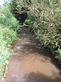 Rivacre Brook at Great Sutton (1).JPG