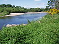 River Nairn - geograph.org.uk - 189992.jpg