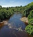 River Swale, near Richmond - geograph.org.uk - 1389554.jpg