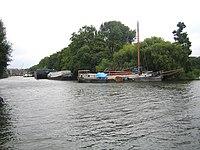 River Thames at Isleworth Ait - geograph.org.uk - 535417.jpg