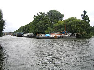 Isleworth Ait - The southern tip of the ait