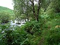 River and path - geograph.org.uk - 518747.jpg