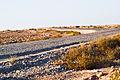 Road Desert.jpg