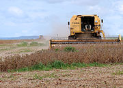 Ronodonópolis colheita soja (Roosevelt Pinheiro) 28mar09