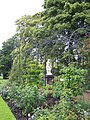 Rose Garden and statue - geograph.org.uk - 1006084.jpg