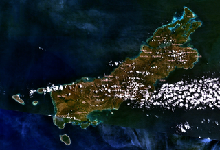 https://upload.wikimedia.org/wikipedia/commons/thumb/d/d9/Rote_%28Island%29_123.05527E_10.71620S.png/320px-Rote_%28Island%29_123.05527E_10.71620S.png