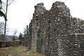 Ruine Alt-Signau 2.jpg