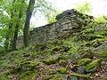 Ruine Hirschstein xy 1.JPG