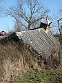 Ruined shed - geograph.org.uk - 1745020.jpg