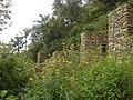 Ruins and flowers 1.JPG