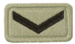 SANDF Rank Insignia Lance Corporal embossed badge.png
