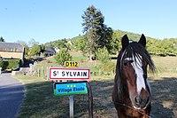 Saint-Sylvain Entrée.jpg
