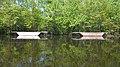 Saint John River (8457185357).jpg