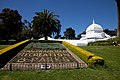 San Francisco Conservatory of Flowers-14.jpg