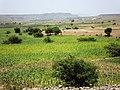 Sana'a, Hodeidah road near Sanaa - panoramio - alimkasim.jpg