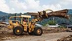Sandakan Sabah Plywood-Factory-05.jpg