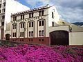 Santa Luzia, Funchal - 29 Jan 2012 - SDC15594.JPG