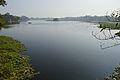 Santragachi Lake - Howrah 2013-01-25 3581.JPG