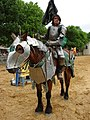 Scarborough-Faire-TX-Joust-1687.jpg