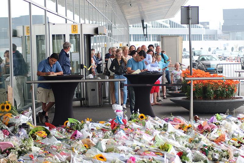 Депутаты голландского парламента попросили разобраться, почему Украина не закрыла воздушное пространство в 2015-м году