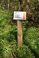 Schleswig-Holstein, Fockbek, Naturschutzgebiet Fockbeker Moor NIK 1633.jpg
