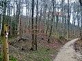 Schwäbische-Alb-Oberschwaben-Weg (HW 7) und Schwarzwald-Schwäbische-Alb-Allgäu-Weg (HW 5) beim Berg Bussen - panoramio.jpg