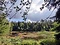 Schwarzweiher 2 - panoramio.jpg