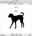 Screenshot von Anki v2.0.31 unter LinuxMint.png