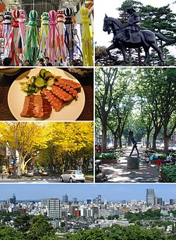 From top left: Sendai Tanabata Festival, Statue of Date Masamune, Gyutan, Jozenji St. in Summer, Jozenji St. in Autumn, Skyline of Sendai.