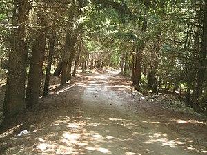 Ferdinandea (Calabria) - Image: Sentiero a ferdinandea