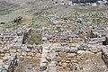 Shomronim, Shechem, Har Beracha, Shomron, Palestine 09.jpg