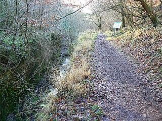 Siccaridge Wood