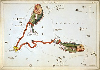Pisces (constellation) - From Urania's Mirror (1824)
