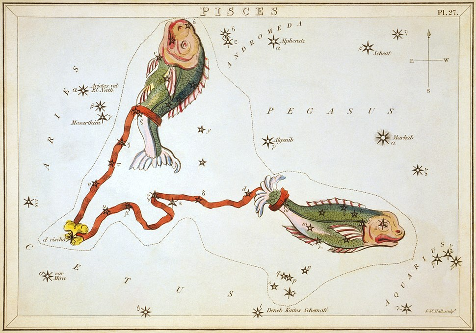Sidney Hall - Urania's Mirror - Pisces
