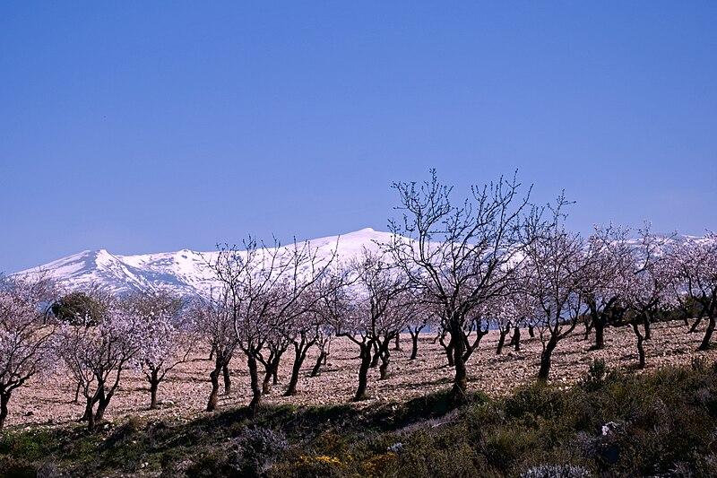 Inverno na Europa: onde faz mais frio