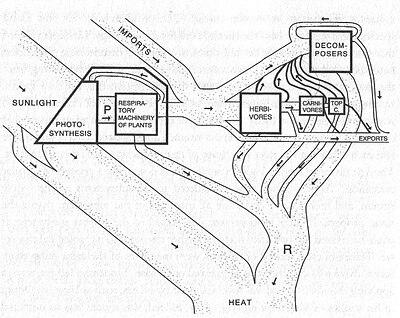 Принципиальная схема потоков