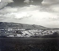 Singelic, 1963.jpg