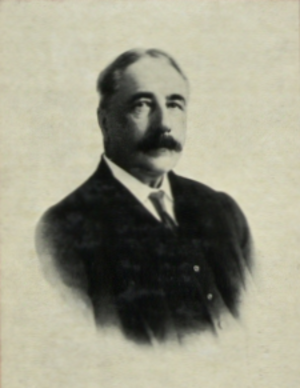 Arthur Young (governor) - Arthur Henderson Young as Governor of the Straits Settlements